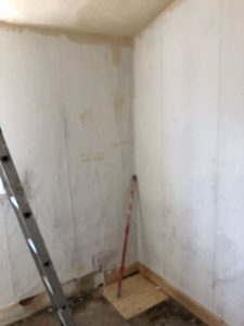 Paint and More Paint on Social HMOs